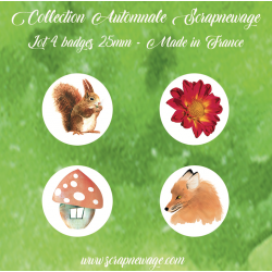 Lot 4 Badges Nature automnale