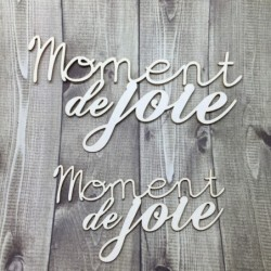 Lot 2 mots Moments de joie